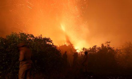 Senado cria comissão externa para monitorar ações contra queimadas no Pantanal