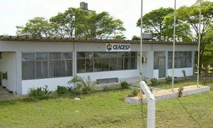 PF vai investigar sumiço de mais de 1,6 mil toneladas de trigo da Ceagesp em Tatuí