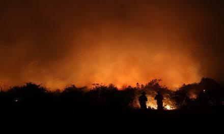 Pantanal tem 8.106 pontos de incêndio em setembro; ano já tem o maior número de focos da história