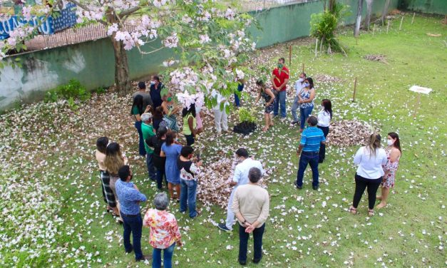 Emater comemora Dia da Árvore com distribuição de mudas frutíferas