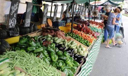Calendário da feira: outubro tem uva, melão, tomate e pimentão