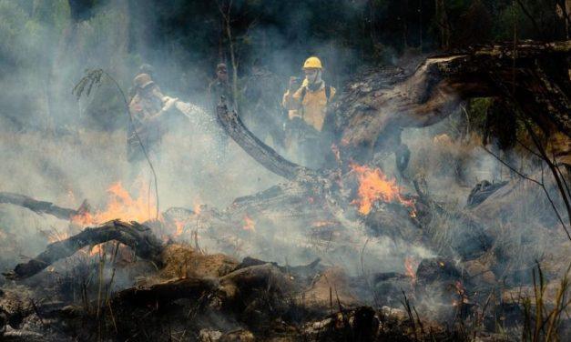 Ibama manda brigadistas voltarem às atividades contra incêndios
