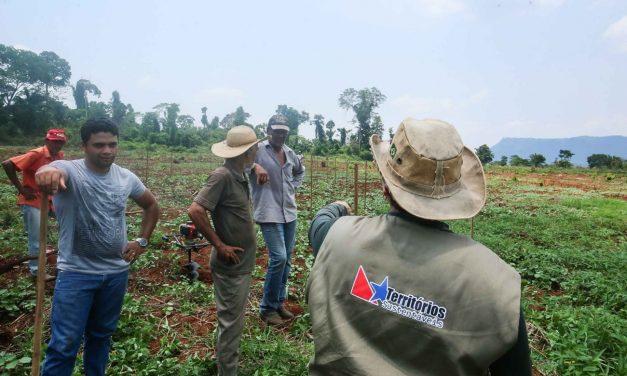 Plano de Regularização Ambiental beneficia agricultores inscritos no 'Territórios Sustentáveis'