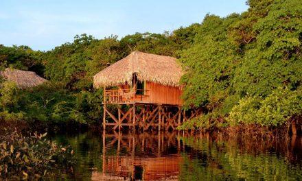 Hotéis de selva oferecem cenário selvagem com conforto na Amazônia