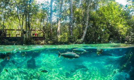 Nobres, em Mato Grosso, tem água da cor do Caribe, muita natureza e sossego