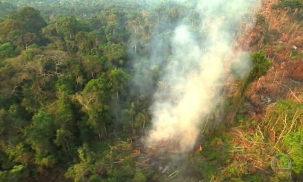 Novas metas de Salles para o Acordo de Paris liberam mais emissões no Brasil, aponta Observatório do Clima