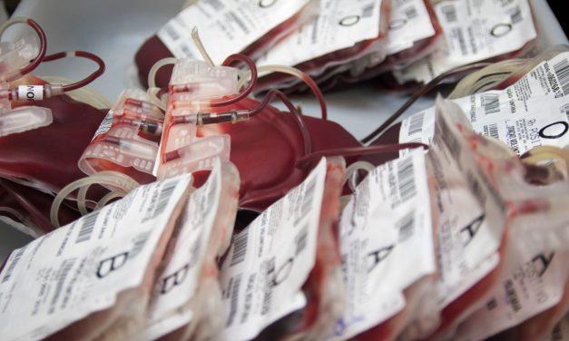 Hemopa reforça a importância das doações de sangue no período de final de ano