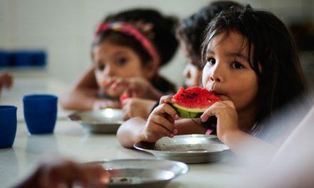 Seaster dá apoio à agricultura familiar e garante segurança alimentar e nutricional em municípios paraenses
