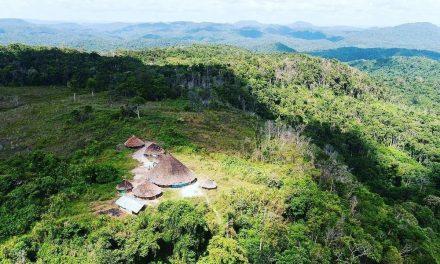 Conselho de saúde indígena relata em ofício mortes de crianças Yanomami com sintomas de Covid em Roraima