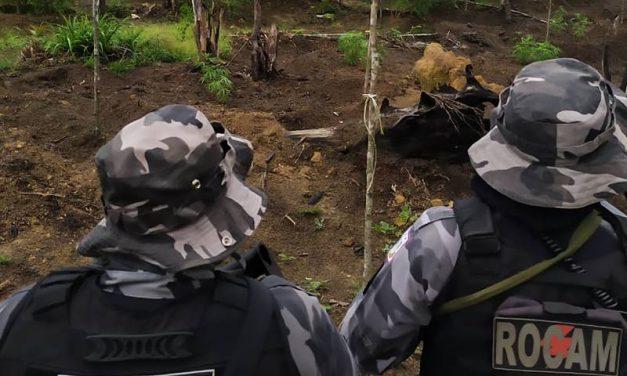 Polícia Militar intensifica ações de combate ao tráfico de entorpecentes