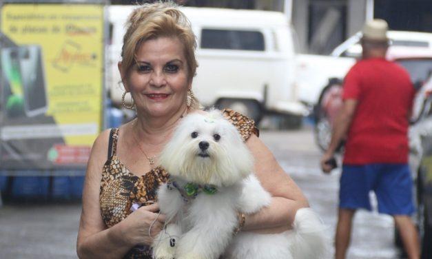 Pets ajudam a manter a saúde mental na pandemia da covid-19