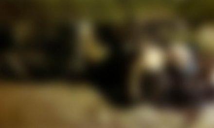 Polícia investiga se idoso foi vítima de acerto de contas em Tailândia