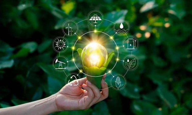 Pará será sede do Fórum Mundial de Bioeconomia