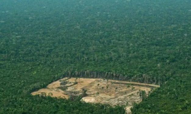 Governo e ruralistas pressionam por lei polêmica que beneficia desmatadores da Amazônia