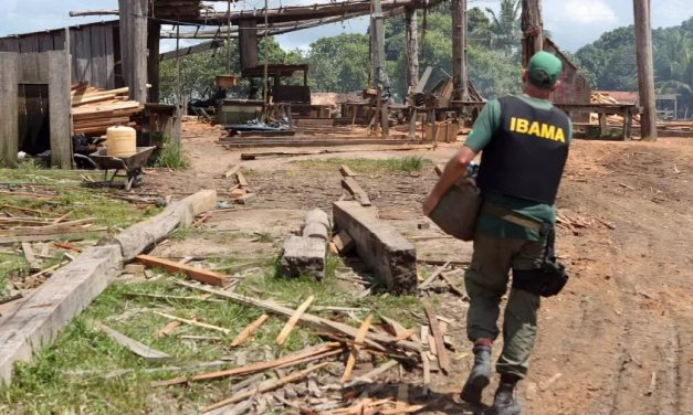 Servidores do Ibama denunciam paralisação total do sistema de multas
