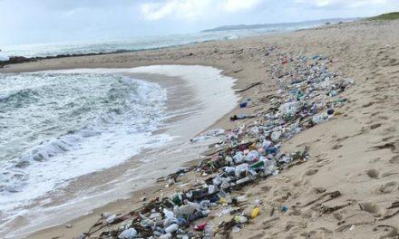 Seringas, sapatos, documentos: mais de 1,5 tonelada de lixo é encontrada em praias do RN