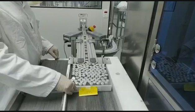 Governo Bolsonaro recusou 11 vezes ofertas para compras de vacina