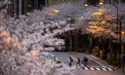 Japão planeja 'passaporte Covid' para retomar turismo internacional