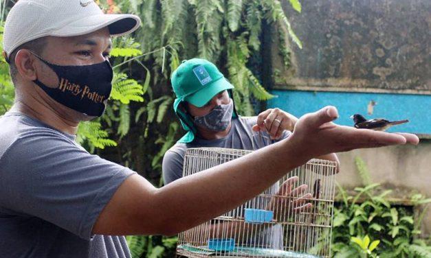Mangal das Garças realiza soltura de aves resgatadas