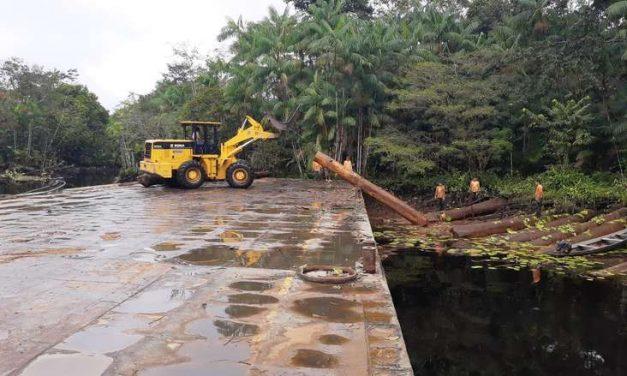 Comunidade agroextrativista no Marajó comercializa primeiro lote de madeira legalizada
