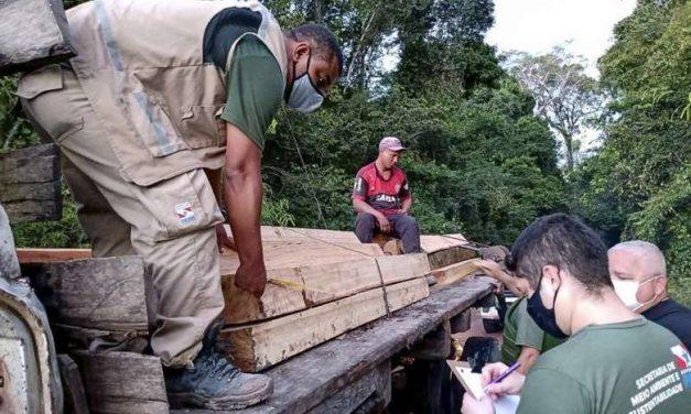 Semas apreende madeiras e equipamentos usados na exploração ilegal de madeira em Moju