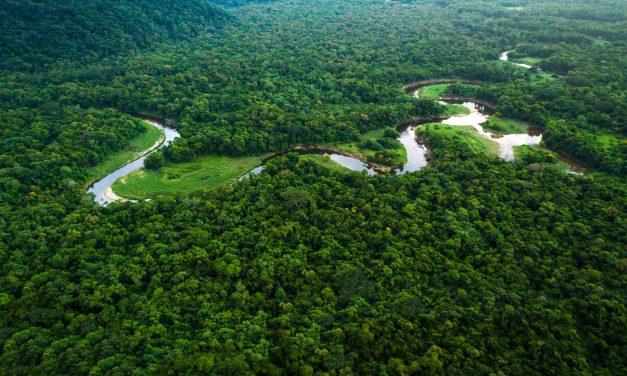 França diz que Amazônia não é só dos brasileiros e não assina com Mercosul