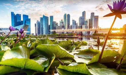 A cidade asiática obcecada com a limpeza