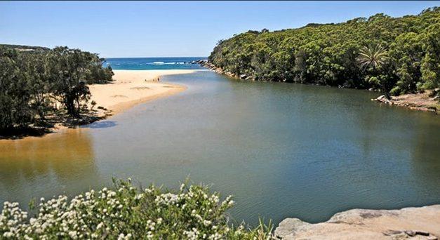 Austrália: dois nudistas fogem de um veado, se perdem no mato, precisam ser resgatados pela polícia e são multados