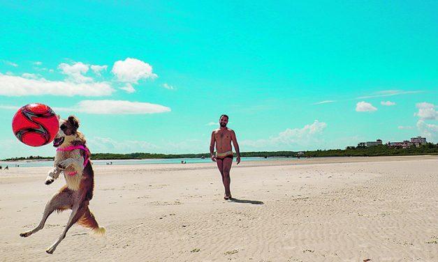O verão do Pará é pai d'égua! Veja dicas de lugares