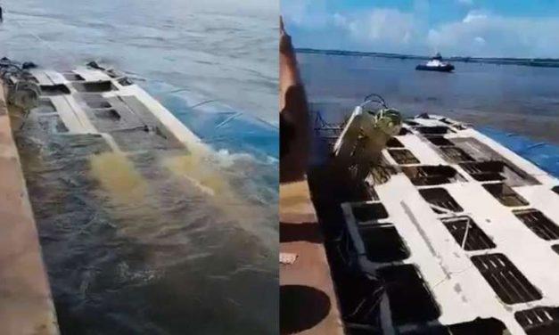 Após seis anos, navio que naufragou com bois vivos começa a ser retirado em Barcarena; assista!