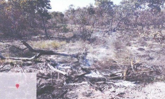 Fazendeiro é multado em R$ 10,4 milhões por queimada no Pantanal em MT