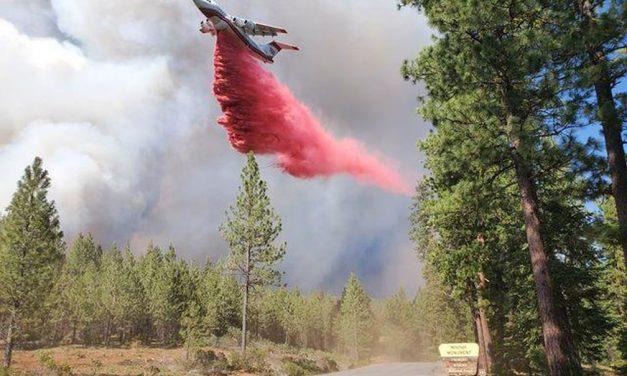 Incêndio florestal na Califórnia atravessa para Nevada nos EUA