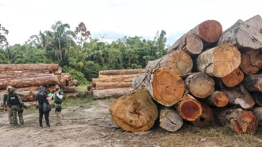 Mourão diz que redução do desmatamento na Amazônia no último ano deve ficar abaixo da meta