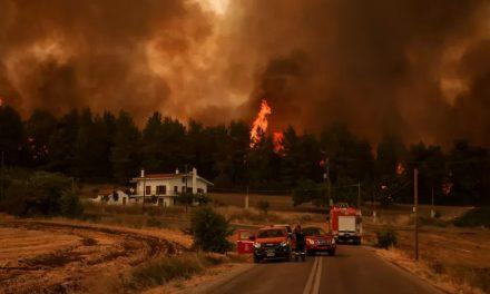 Incêndios na Europa: Por que as florestas do continente estão queimando