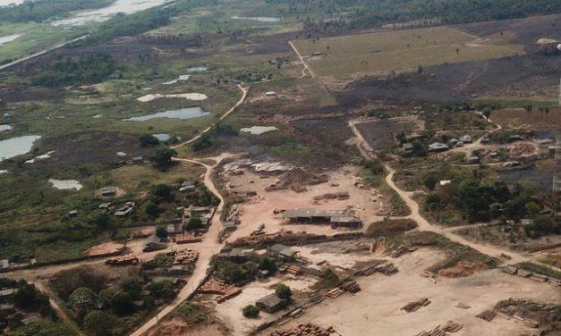 Policiais fiscalizam madeireiras e fazem operação após satélite flagrar quase 500 alertas de desmatamento em RO