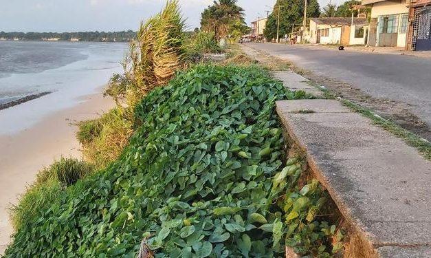 Estudo da Uepa identifica erosão na praia de Vila do Conde, em Barcarena