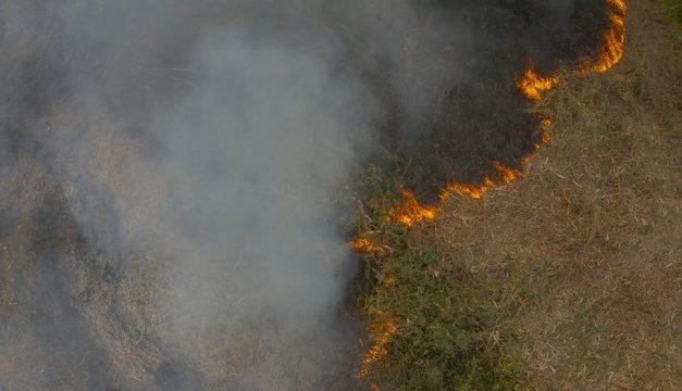 Número de focos de calor neste ano é 54% menor do que ano passado em MT, diz bombeiros