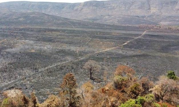 Brasil tem incêndios 'descontrolados' e acima da média em 4 estados e no DF; entenda elo com clima e ação humana
