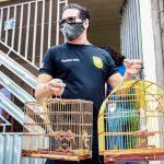 Polícia Civil vai às ruas investigar maus-tratos a animais na Grande Belém