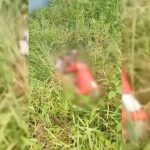 Corpo de homem não identificado é encontrado em decomposição em Marituba
