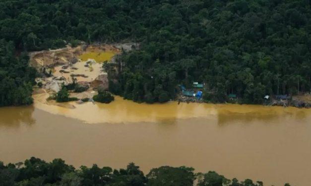 Segundo menino indígena desaparecido é encontrado morto em área de garimpo